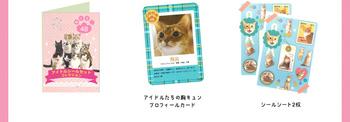 member_54.jpg