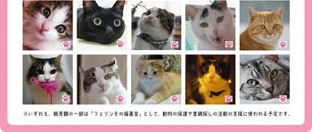 member_57.jpg